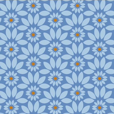 moroccanflower_cv2